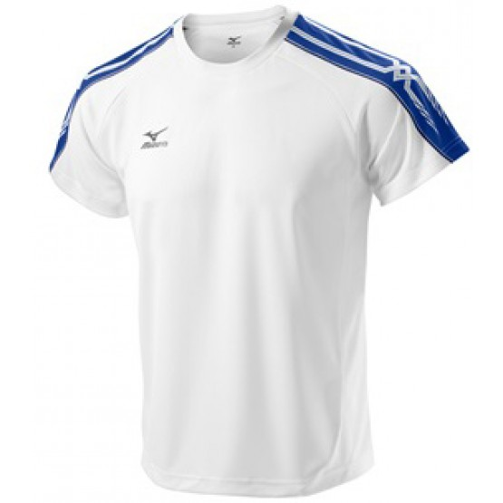 Футболка Mizuno Tee 201 бело-синяя мужская